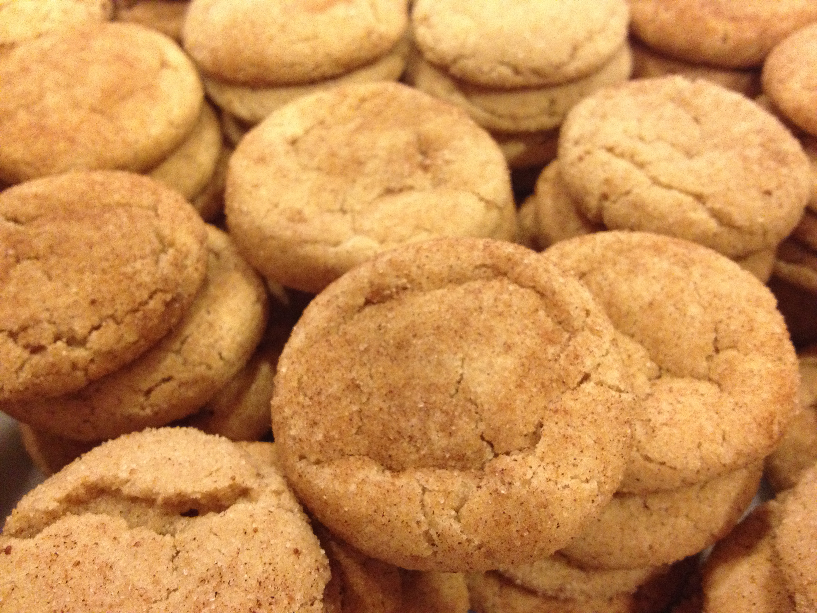 ... Challenge – Day 5 Snickerdoodle Day | Mom, There's nothing to eat